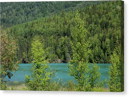 Green River Canvas Print