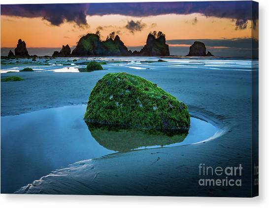Olympic Peninsula Canvas Print - Green Rock by Inge Johnsson