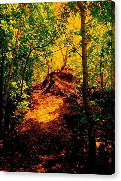 Green Silence Canvas Print