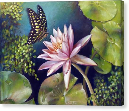 Green Tailed Jay Butterfly And Water Lily Canvas Print