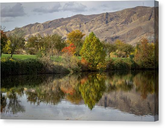 Green Tree Pond Reflection Canvas Print