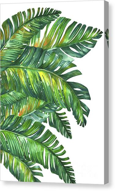 Banana Tree Canvas Print - Green Tropic  by Mark Ashkenazi
