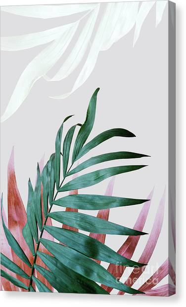 Southwest Canvas Print - Green Tropical Leaves, Fern Plant by PrintsProject