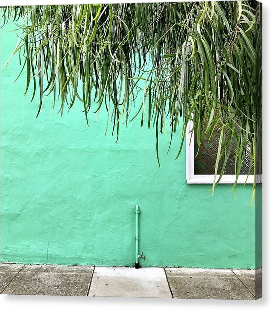 Canvas Print - Green Wall With Leaves by Julie Gebhardt