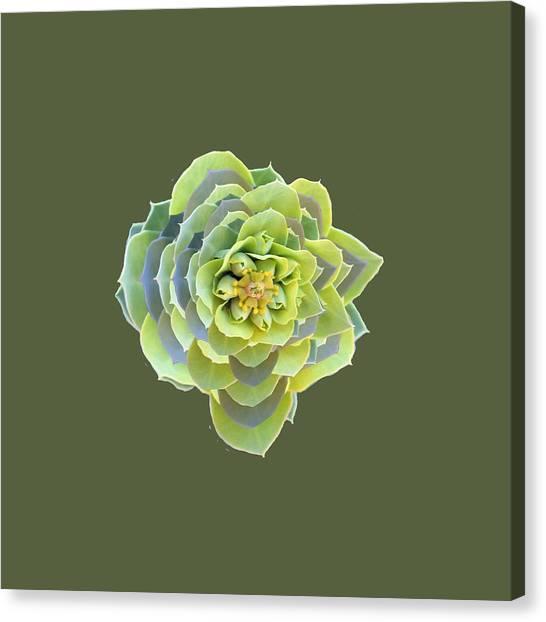 Green Weed Flower Kaliedoscope Canvas Print