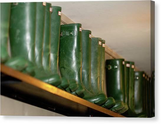 Green Wellies Canvas Print