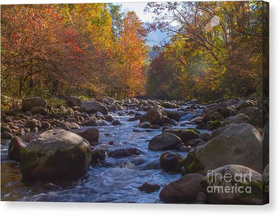 Greenbriar Creek Canvas Print