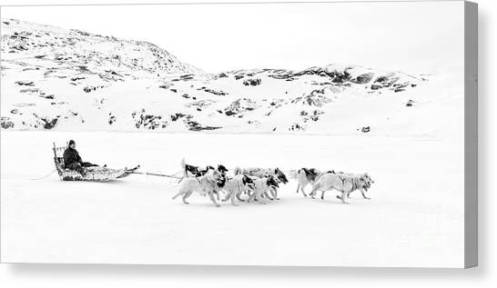Greenland Canvas Print - On The Trail To Home by Janet Burdon