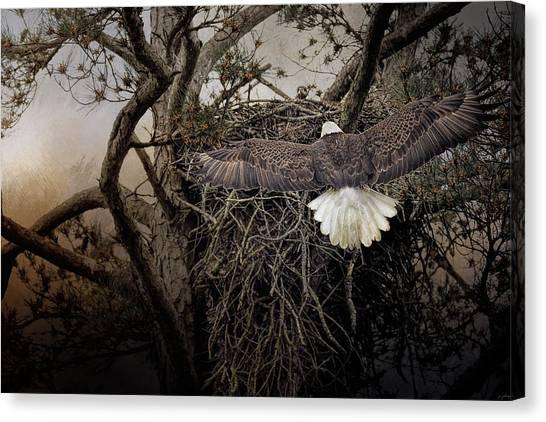Eagle In Flight Canvas Print - Greeting Mama by Jai Johnson