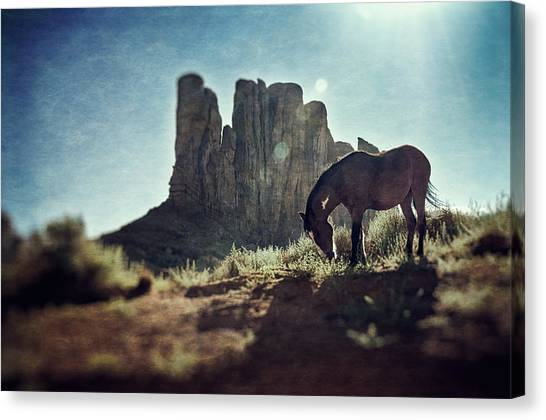 Greetings From The Wild West Canvas Print