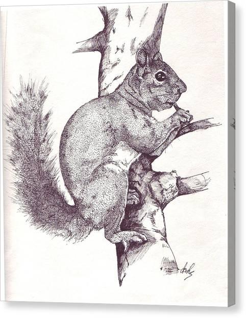 Grey Squirrel Canvas Print by Debra Sandstrom