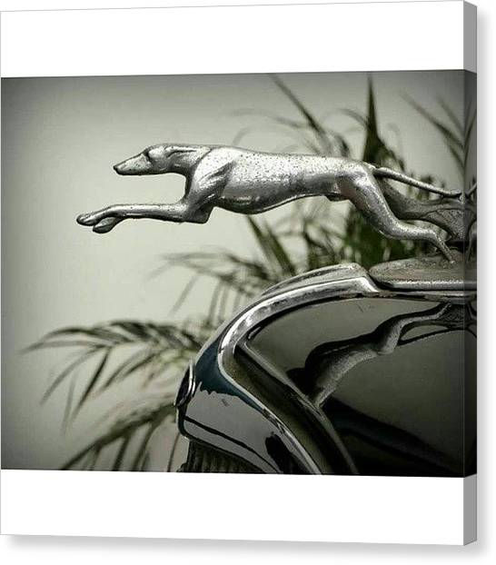 Ford Canvas Print - Greyhound Radiator Cap by Karyn Robinson