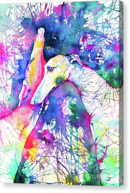 Greyhound Trance Canvas Print