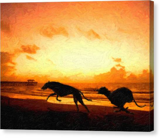 Running Canvas Print - Greyhounds On Beach by Michael Tompsett