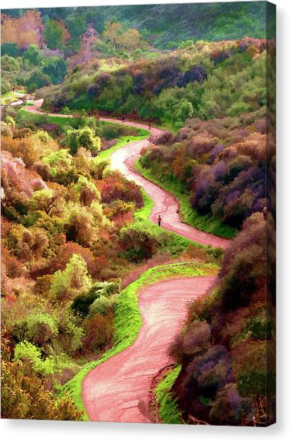 Griffith Park Trail Canvas Print