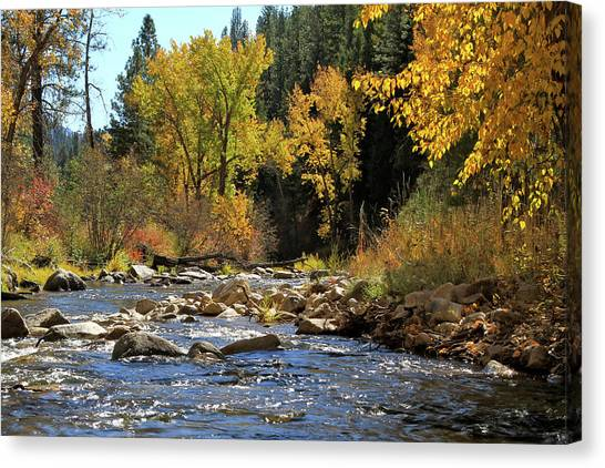 Boise National Forest Canvas Print - Grimes Creek October by Ed  Riche