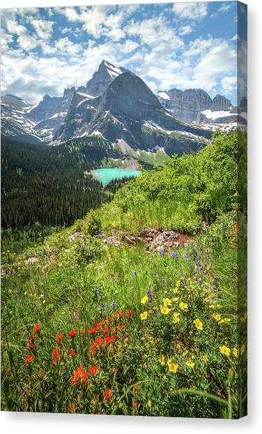Grinnell Flowers // Grinnell Hiking Trail, Glacier National Park  Canvas Print