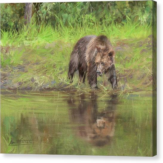 Brown Bear Canvas Print - Grizzly Bear At Water's Edge by David Stribbling