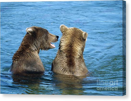 Brown Bear Canvas Print - Grizzly Bear Talk by Yva Momatiuk and John Eastcott