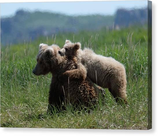 Grizzly  Mother And A Cub In Katmai National Park Canvas Print