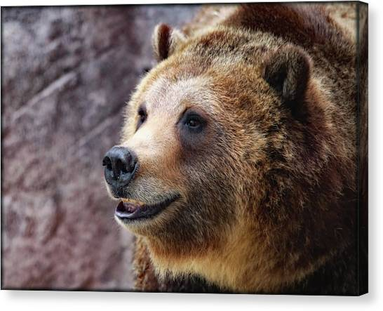 Canvas Print featuring the photograph Grizzly Smile by Elaine Malott