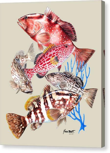Grouper Montage Canvas Print