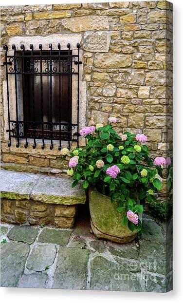 Groznjan Istrian Hill Town Stonework And Flowerpot - Istria, Croatia Canvas Print