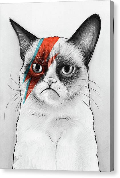 Humor Canvas Print - Grumpy Cat As David Bowie by Olga Shvartsur