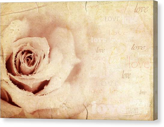 Grungy Rose Background Canvas Print