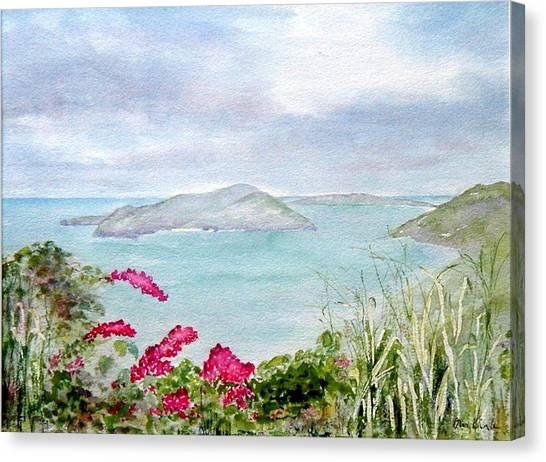 Guana Island Canvas Print