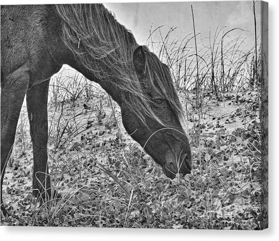 Guardian 2 Canvas Print
