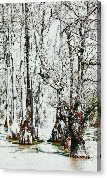 Great Dismal Canvas Print - Guardians Of The Cypress Swamp Fx by Dan Carmichael