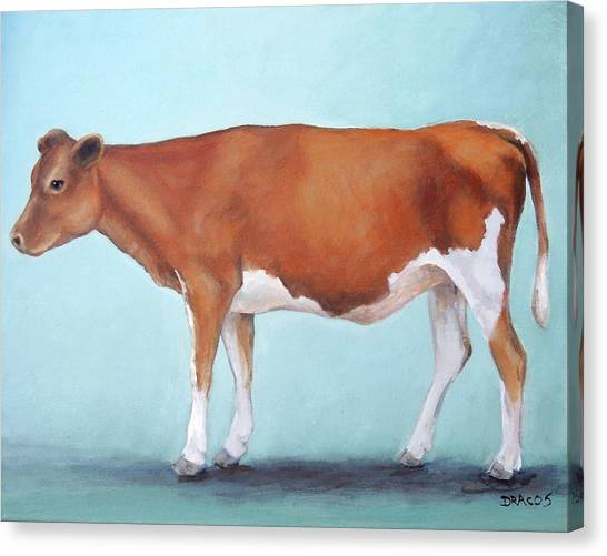 Cow Canvas Print - Guernsey Cow Standing Light Teal Background by Dottie Dracos