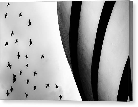 Guggenheim Museum With Pigeons Canvas Print