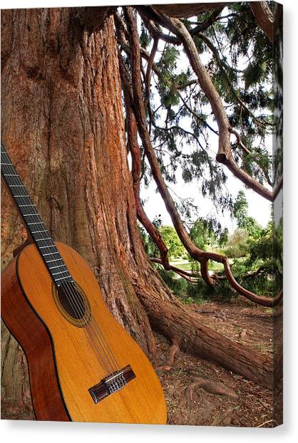 Classical Guitars Canvas Print - Guitar Serenade For Trees by Gill Billington