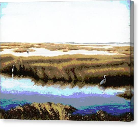 Gulf Coast Florida Marshes I Canvas Print