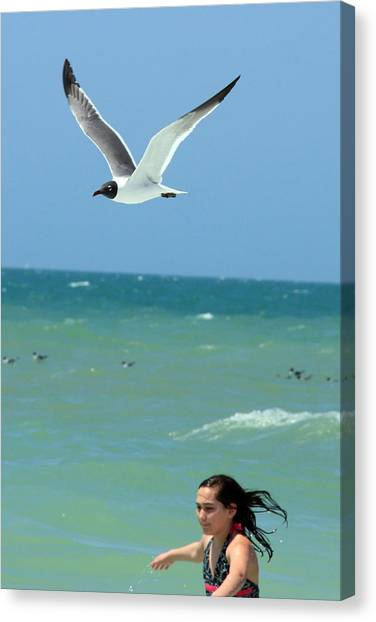 Gull And Girl Canvas Print