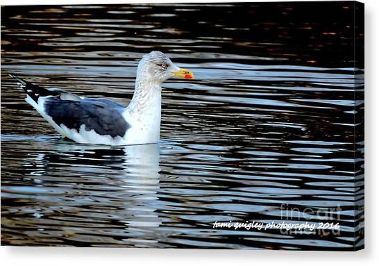 Gull On Winter's Pond  Canvas Print