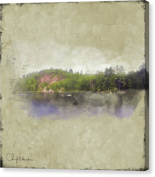 Canvas Print featuring the digital art Gull Pond by Christopher Meade