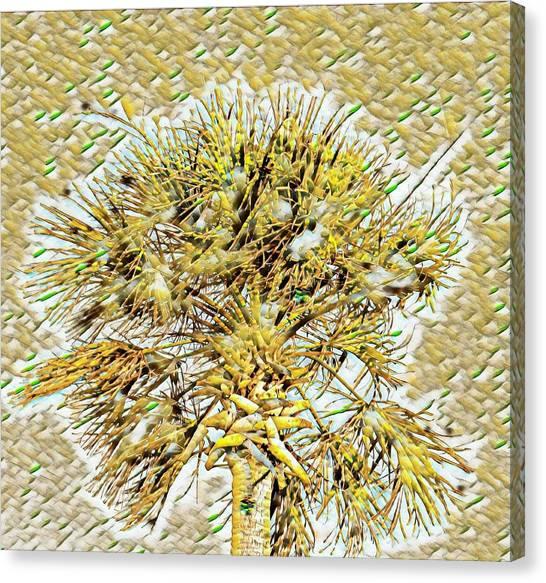 Gullah Palm Canvas Print