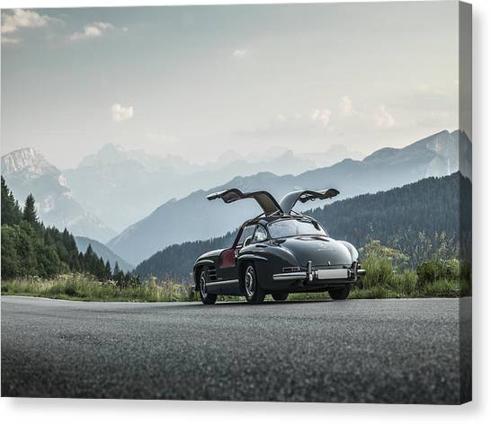 Gullwing In The Mountains Canvas Print