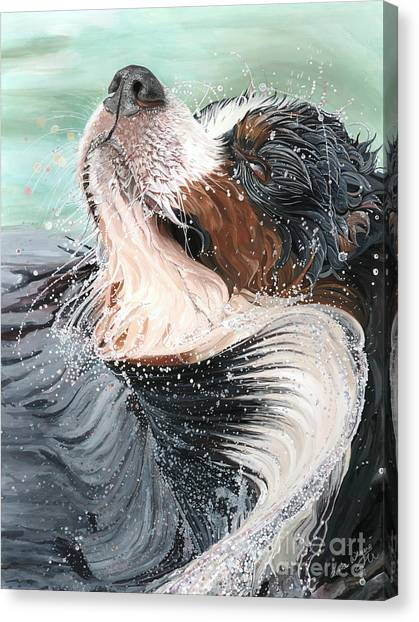 Bernese Mountain Dogs Canvas Print - H2O by Liane Weyers