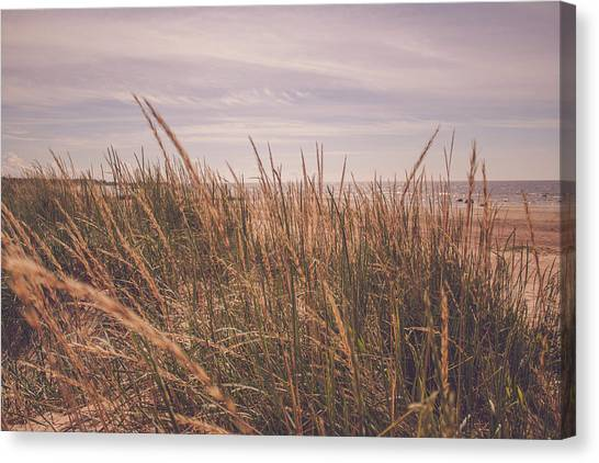 Canvas Print - Hailuoto Grasses by Jo Jackson