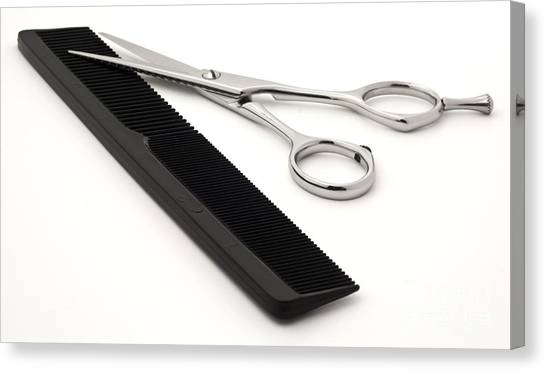 Careers Canvas Print - Hair Scissors And Comb by Blink Images