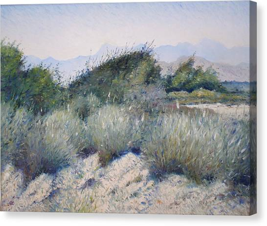 Hajar Mountains Oman 2002 Canvas Print by Enver Larney