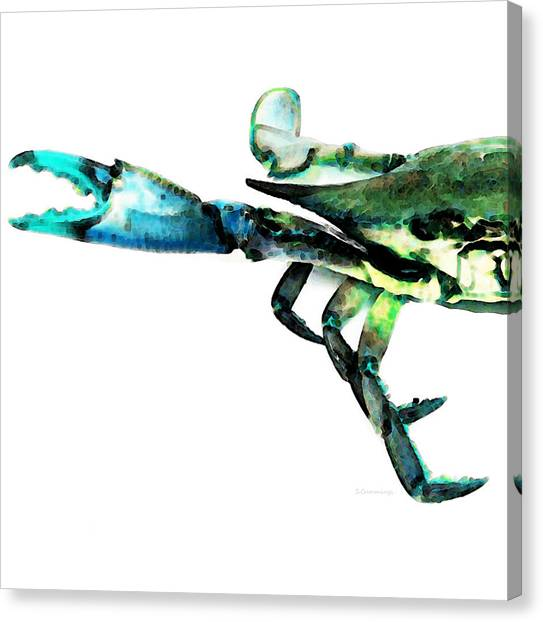 Crabs Canvas Print - Half Crab - The Left Side by Sharon Cummings