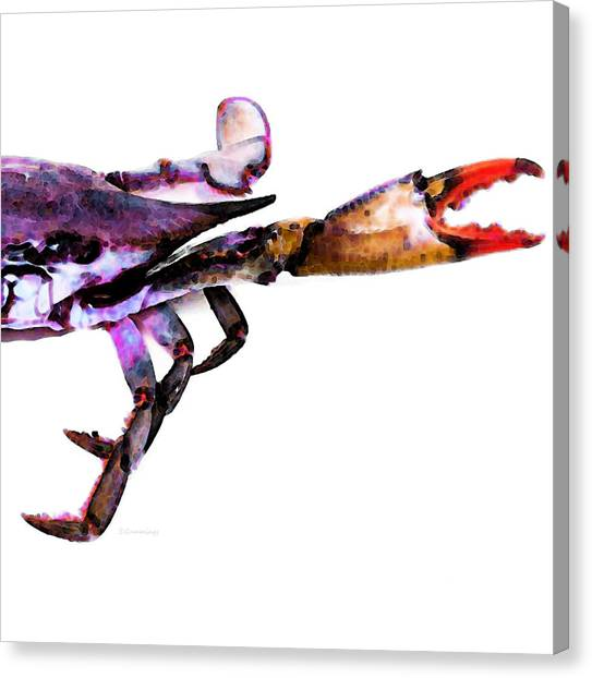 Crab Canvas Print - Half Crab - The Right Side by Sharon Cummings