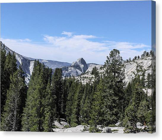Half Dome From Olmstead Point Yosemite Valley Yosemite National Park Canvas Print