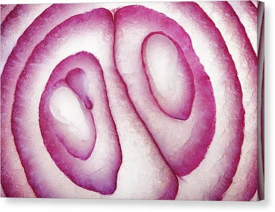 Half Life Canvas Print - Half Red Onion Macro by Johan Swanepoel