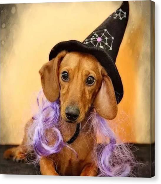 Halloween Canvas Print - #halloween #happyhalloween by Susan Candelario